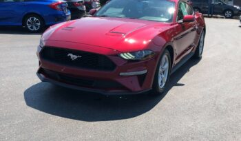 2019 Ford Mustang ECO full